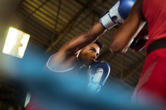 Two male athletes fight in boxing ring Stock Images