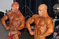 Two male bodybuilders showing their chest pose Stock Image