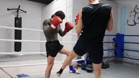 Two ma boxer training leg kicks while boxing in fight ring. Athlete man training low blows by foot while personal. Two male boxer training leg kicks while boxing stock video footage