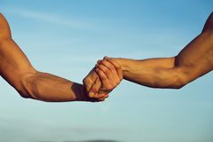 Two male hands or arms royalty free stock images