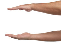 Two male hands with space to put something. Stock Photo