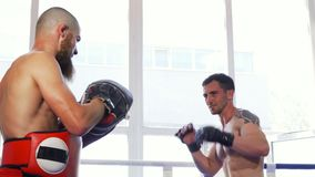 Two male mma fighters training shirtless at the gym. Handsome muscular male mma fighter working out at the fight club. Professional kickboxer sparring with his stock video footage
