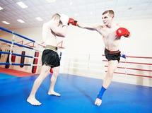 Muay thai sportsman fighting at boxing ring. Two male muay thai boxers fighting at training boxing ring Royalty Free Stock Photos