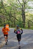 Two Male Runners, 2021 Blue Ridge Marathon