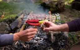 Two male`s hands clinking with bitter shots with grilled Shashlik background - the popular roasted on the Fire Meat meal. Royalty Free Stock Photo