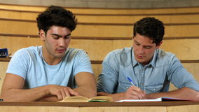 Two male students working together. In college stock footage