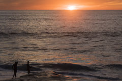 Two male surfers in Windansea beach during sunset in San Diego, California Royalty Free Stock Images
