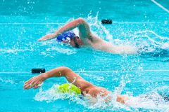 Male swimmers competing in freestyle stroke. Two male swimmers competing in freestyle stroke at a local swimming pool, good for sport or competition concept Royalty Free Stock Photos