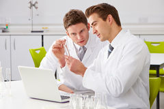 Two Male Technicians Working In Laboratory. Looking At Test Tube Royalty Free Stock Images