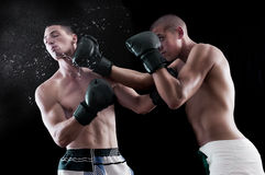 Two man boxing. Boxing fighting in the ring Royalty Free Stock Photos
