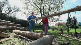 Two man carry long log on home backyard. Low angle wide shot of people working with timber in slow motion stock footage