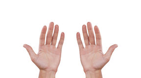 Two man hands. Isolated on white background Royalty Free Stock Photos