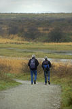 Two man walking trough a nature area with dunes and grassland. Stock Photos