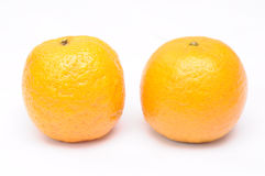Two mandarin oranges Royalty Free Stock Images
