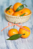 Two mandarins on the background of basket Royalty Free Stock Image