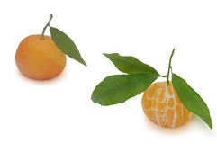 Two mandarins  on white background Royalty Free Stock Photography