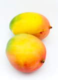 Two Mango. Still life of two mangoes on white background Royalty Free Stock Photo