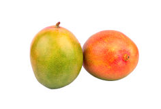Two mango fruit Royalty Free Stock Image