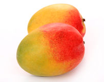 Two mango fruit. Over white background Royalty Free Stock Photo