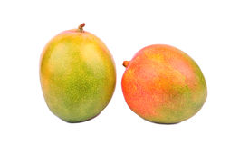 Two mango fruit Royalty Free Stock Photos