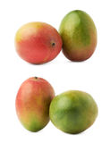 Two mango fruits isolated Royalty Free Stock Images