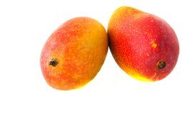 Two mango fruits Stock Photos