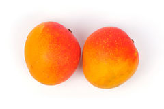 Two mangoes Stock Images