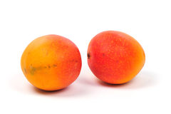 Two mangoes Royalty Free Stock Image