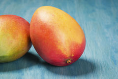 Two Mangoes on a Blue Background Royalty Free Stock Photo