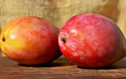 Two mangoes fruits. Royalty Free Stock Photos
