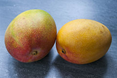 Two mangos Royalty Free Stock Photography