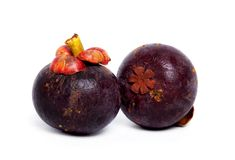 Two mangosteen Royalty Free Stock Photography