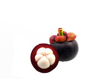 Two mangosteens Stock Photos
