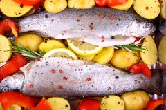 Two marinated rainbow trout with potato, red pepper and lemon Stock Photos