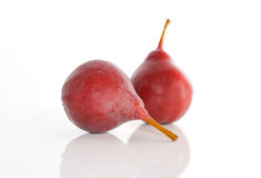 The two maroon pears on a white background. Stock Photography
