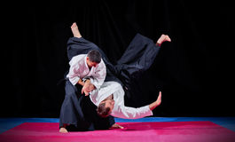 Two martial arts fighters Stock Images