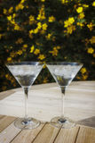 Two martini glasses in the sunshine Stock Photography