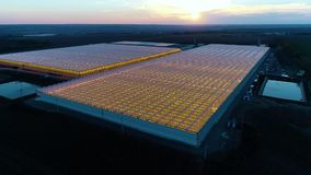 Amazing aerial shot, two huge glasshouses, sunset on the background. Two massive greenhouses from high angle, sunset on the background, aerial shot stock video footage