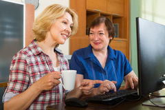 Two mature female  browsing web Stock Photography