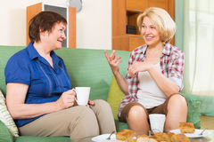 Two mature female  drinking tea Stock Image