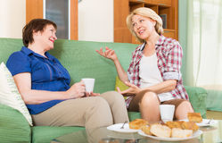 Two mature female  drinking tea Royalty Free Stock Images