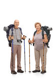Two mature hikers posing with hiking equipment. Full length portrait of two mature hikers posing with hiking equipment isolated on white background Stock Photo