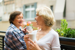 Two mature housewives drinking tea at terrace Royalty Free Stock Images