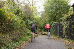 Two Mature Male Cyclists Riding Bikes Along Path. Rear View Two Mature Male Cyclists Riding Bikes Along Path Royalty Free Stock Photos