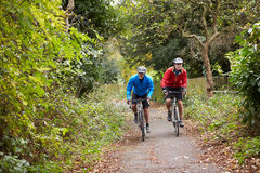 Two Mature Male Cyclists Riding Bikes Along Path Stock Photography