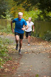 Two Mature Male Joggers Running Along Path. Two Mature Male Joggers Running Along Tree Lined Path Stock Photos