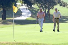 Two mature men playing golf, approaching balls near flag on putting green, smiling Royalty Free Stock Image