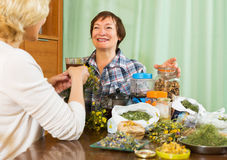 Two mature pensioner with  herbs Stock Photography
