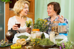 Two mature pensioner with  herbs Royalty Free Stock Images
