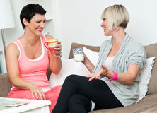 Two mature woman friends chating over coffee
